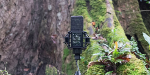 DGT 650 USB mic with built-in interface
