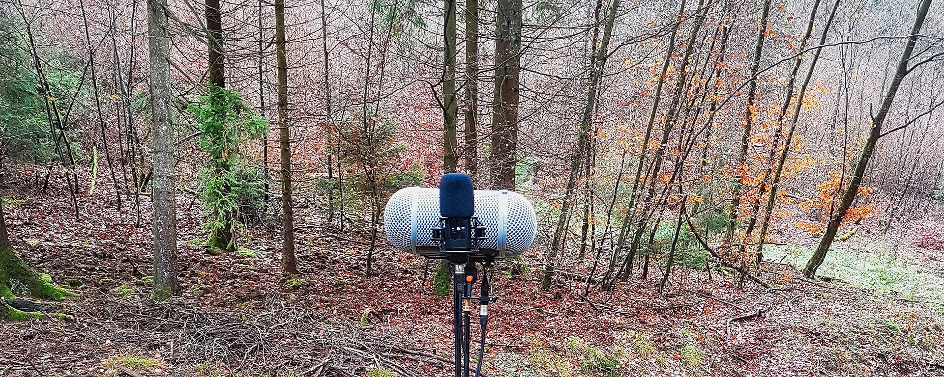 LCT 540 S perfect for Fieldrecording