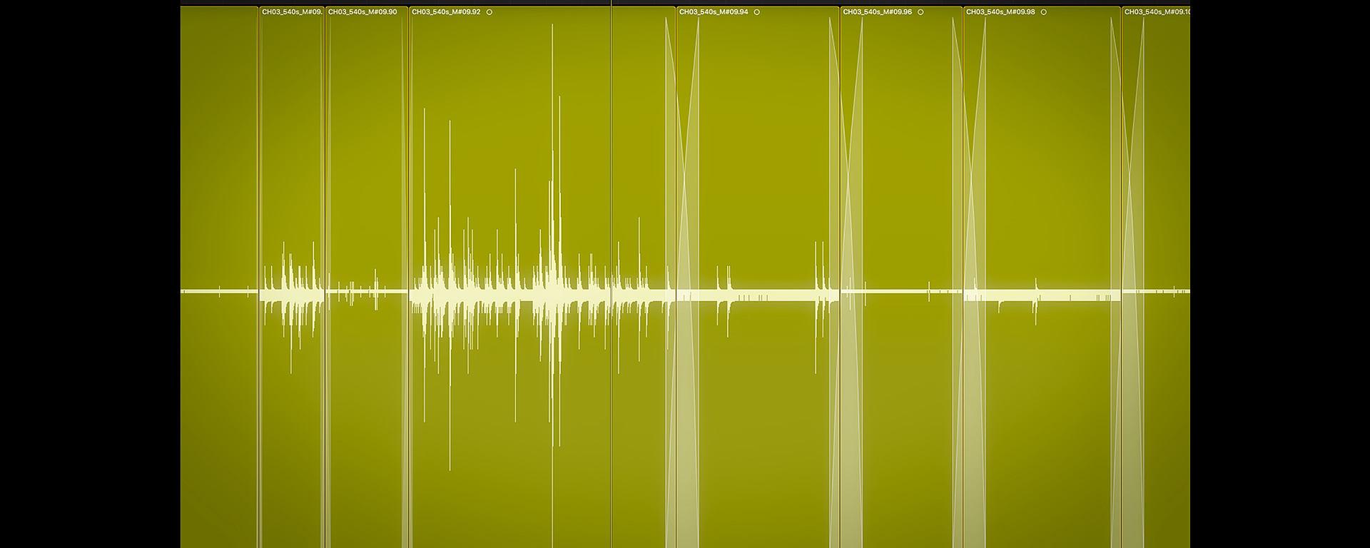 Field Recording Diary