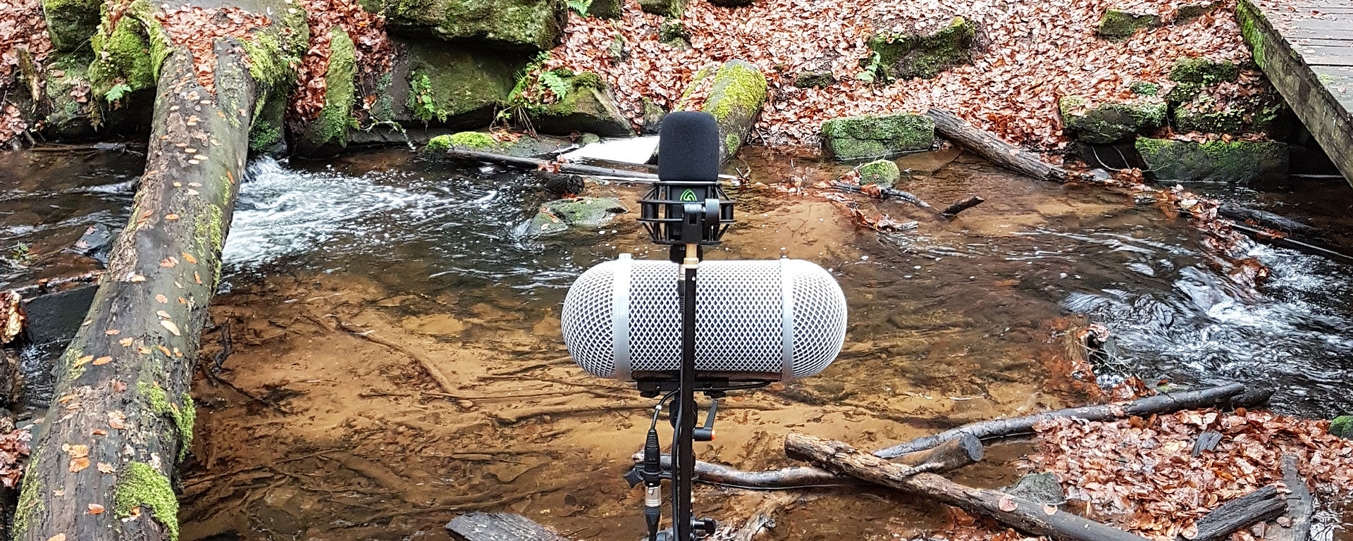 LCT 540 S best microphone for Foley Recording